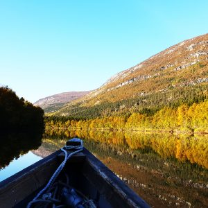 Riverboat Safari - Arctic Panorama Lodge